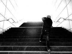 Into the sun - Hamburg HafenCity (ANBerlin) Tags: linien lines ausergewöhnlich extraordinary drausen outdoor innen indoor inside struktur structure abstrakt abstract sonnenlicht sunlight sonne sun untergrund underground hochbahn treppe treppenhaus staircase stairwell stufen stairs bauwerk building deutschland germany hamburg mitte hafencityuniversität hafencity architektur architecture u4 hvv infrastruktur infrastructure bahnsteig platform bahnhof station ubahn subway metro einfarbig monochrome biancoenero noiretblanc schwarzweis blackwhite sw bw anb030 shotoniphone iphotography iphonography 8plus iphone8 iphone apple