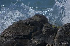 _DSC4979 (Azurel96) Tags: beach playa mar ocean sea shore seashore waves submarine marine asturias nature natural beauty colorful sky skyline landscape water