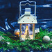 Beautiful Christmas background with a luminous lantern and branches of a Christmas tree. New year mood