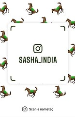 example of nametag for Instagram (Sasha India) Tags: instagram nametag instatag tag name sashaindia дизайн qrcode design 設計 디자인 التصميم σχέδιο डिज़ाइन வடிவமைப்பு desenhar projekt עיצוב desain horse caballo