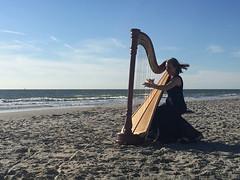 Harfe (lotharmeyer) Tags: harfe lotharmeyer iphone horizont westenschouwen kunst zeeland küste blue holland dame harfinistin