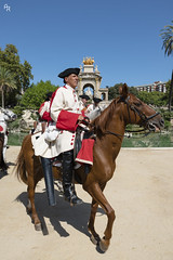 Horse in army (Andrea Rizzi Esk) Tags: catalugna catalonia spain barcelona 2018 day sky horse soldier parade war honor animal human colorful