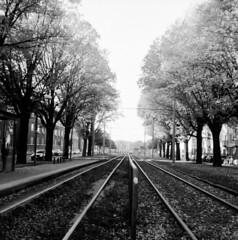 rails (rotabaga) Tags: sverige sweden svartvitt göteborg gothenburg blackandwhite bw bwfp mediumformat mellanformat 120 6x6 fomapan lomo lomography lubitel166 twinlens diy