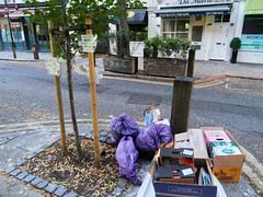 Endell Street Tree of Filth. 20181019T06-22-25Z (fitzrovialitter) Tags: coventgarden england gbr geo:lat=5151538000 geo:lon=012578000 geotagged holbornandcoventgardenward unitedkingdom peterfoster fitzrovialitter city camden westminster streets urban street environment london fitzrovia streetphotography documentary authenticstreet reportage photojournalism editorial daybyday journal diary captureone olympusem1markii mzuiko 1240mmpro microfourthirds mft m43 μ43 μft ultragpslogger geosetter exiftool rubbish litter dumping flytipping trash garbage