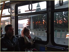 New Westminster Morning Bus BC18j03 LG (CanadaGood) Tags: canada bc britishcolumbia newwestminster sunrise bus people person traffic canadagood 2018 thisdecade color colour cameraphone morning