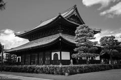 (www.kennyng.co.uk) Tags: sony shotwithsony a6000 e18105g japanese japan nippon temple buddhism buddha bw blackandwhite blackandwhitephotography mono monochrome building architecture worldheritage worldheritagesite travel ngc