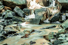 Autumn 2018 (JustinMG23) Tags: moutain rainier pnw pacific northwest fall autumn forest trees waterfall river glacier
