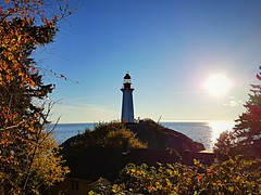 Lighthouse, sun, sea and autumn leaves (walneylad) Tags: lighthousepark pointatkinson westvancouver britishcolumbia canada park parkland woods woodland forest urbanforest rainforest lookout seashore oceanfront sea ocean water pacificocean englishbay october fall autumn sun sunset bluesky light dark shadows ferns rock trees branches leaves colour color green brown yellow red orange gold path trail walk lighthouse nature scenery view