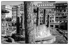 R0001708 (manuelcesari) Tags: ricoh gr ii bianco nero black bw street roma camera contrasto shot snap