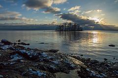Joensuu - Finland (Sami Niemeläinen (instagram: santtujns)) Tags: joensuu suomi finland october lokakuu pyhäselkä kuhasalo jörvi lake luonto nature north carelia pohjoiskarjala auringonlasku sunset sky taivas syksy autumm