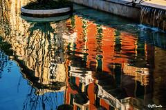 Riflessi nella fontana di Piazza Verdi (danilocolombo69) Tags: fontana riflessi palazzi piazza danilocolombo danilocolombo69 nikonclubit città