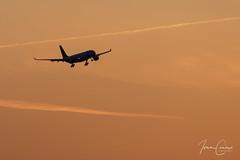 Airbus A330-223 – Brussels Airlines – OO-SFU – Brussels Airport (BRU EBBR) – 2018 04 06 – Landing RWY 25L – 01 – Copyright © 2018 Ivan Coninx (Ivan Coninx Photography) Tags: ivanconinx ivanconinxphotography photography aviationphotography airbus airbusa330 a330 a330223 brusselsairlines oosfu brusselsairport bru ebbr aviation landing final
