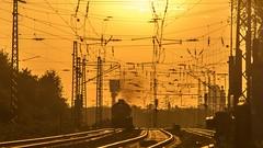 03_2018_10_15_Gelsenkirchen_Bismarck_1266_429_DB_mit_Coil-_und_Brammenzug ➡️ Herne (ruhrpott.sprinter) Tags: ruhrpott sprinter deutschland germany allmangne nrw ruhrgebiet gelsenkirchen lokomotive locomotives eisenbahn railroad rail zug train reisezug passenger güter cargo freight fret bismarck bottrop abzw unserfritz crange brll db rprs rb43 0632 1218 1223 1266 6185 dortmund dorsten coils brammen bü bahnübergang hochspannungsmast überlandleitung wolken logo natur outddor sonnenuntergang