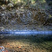 Molalla River in the fall