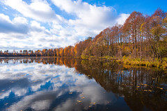Autumn (gubanov77) Tags: autumn nature landscape petushinskiyraion vladimiroblast russia pokrov vvedensky vvedenskoelake forest october