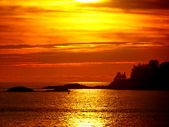 Magical sunset moments in Tofino (+2) (peggyhr) Tags: peggyhr sunset glow islands headlands boat clouds reflections golden light orange black silhouettes trees dsc07288a tofino bc canada yellow thegalaxy thegalaxystars thegalaxystarshof carolina'sfarmfriends