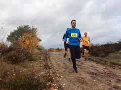 haarlerbergloop 10 km (53)