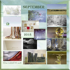 Where did September go? (Elisafox22) Tags: elisafox22 2018 collage snapshot images summary thumbnails border autumn landscape macro glass lensbaby doubleglass helios helios442 indoor stilllife flowers meyeroptik zeiss sony rx100 photos photoshop nik blackandwhite infrared postprocessing abstract paperweight marble sphere beads scarf tassels trees fyviecastle fyvie elisaliddell©2018 september
