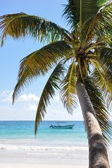 lazy days (marin.tomic) Tags: mexico tulum yucatan caribbean travel nikon d90 beach palm paradise tropical waves sea ocean traveler summer holiday vacation