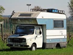 1982 Leyland Sherpa camping car (Alessio3373) Tags: abandoned abandonment abandonedcars abandonedvan oldvan unused unloved neglected forgotten forgottencars camper campingcar leyland sherpa leylandsherpa leylandsherpacamper