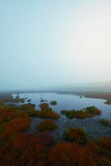misty morning ([ TINO ]) Tags: outdoor nature northsea noperson water fog seascape landscape light lake plant explore dike north autumn