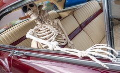 Whatdayamean smokin' is bad for me? (Jersey JJ) Tags: pompton lakes car show nj new jersey skeleton smoking cigar little bird friend shotgun
