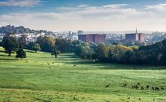 View of Bristol from Ashton Court Estate with deer park (Martin Hewer) Tags: ashton court estate bristol landscape deer park views