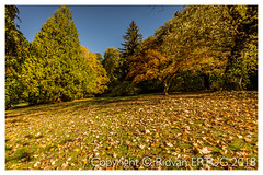 """The autumn display at Stourhead Gardens - Wiltshire UK (R ERTUG) Tags: autumncolors stourheadgardens wiltshire stourton warminster uk nikon1635mmf40 nikond610fx rertug ertug """"nikonflickraward"""""""