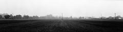 Mist rising from the fields (alasdair.matthews) Tags: film filmisnotdead foma fomapan fomapan100 6x17 5x7 13x18 analogue analog blackandwhite monochrome landscape largeformat bw ilford id11 sheet burkeandjames rodenstock 240mm f56