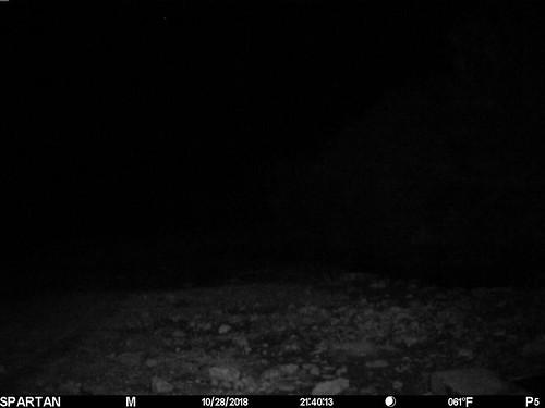 2018-10-28 21:40:13 - Crystal Creek 2