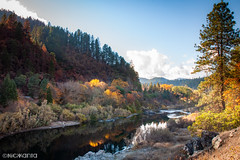 Still (Nick Kanta) Tags: autumn clouds color d90 nikon oregon outdoorphotography reflection river rocks rogueriver sky tamron1750 trees water