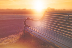 September Sunrise... #HappyBenchMonday (KissThePixel) Tags: nikon nikond750 50mm sigma sigmaart 14 f14 bokeh macro landscape bench happybenchmonday benchmonday monday macromonday sunrise september beautifullight light beautiful sun sunlight dawn morning
