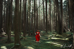 Escape into the Forest (Elis's ☾) Tags: forest magic magia fairy faerie fairytale fantastic fantasy reddress dress wood bosco fuggire run corsa escape travel adventure avventura retouch retouching canada britishcolumbia goldenearsprovincialpark elisascascitelli 2470mm canon5dmark3 light glare luce bagliore girl ragazza donna woman racconto tale self selfie selfportrait ritratto ritrattistica portraiture trees alberi pines conceptual concettuale fineart art arte artistic portfolio landscape adobe colorful ginger redhead