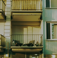Beautyflex2.8-655-Crossbird-FujiXpress-C41-6 (photo:::makina) Tags: color terrace with gnome rollei crossbird 200 fuji hunt xpress c41 beautyflex canter 28