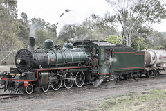 1956 build number 547, QR Heritage train BB181/4 number 1079 Walkers Limited Maryborough, travelling from Ipswich Workshops to Bigge's Camp Grandchester (Lance #) Tags: train steamtrain outdoor ipswichqueensland biggesroad grandchester bb1814class1079 smokeandsteam railroad railwayphotographer steamlocomotive 462 arhsqld