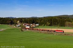 Green (Daniele Sudati) Tags: 1144 öbb österreich österreichischebundesbahnen summerauerbahn güterzug zug oberösterreich austria obb lest altaaustria prato colline laferroviadisummerau railway eisenbahn train nebenbahn
