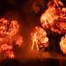 Man Burn Explosion