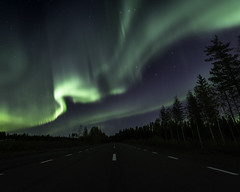 The road to Aurora (JH') Tags: wideangel wood evening road trees tree outdoor outdoors photoshoot photography explore wonderful autumn auroraborealis aurora sky sweden stars d850 forest field fall green grass heaven landscape longexposure colors beautiful borealis blue nikon nature naturephotograph northernlights night nikond850 nightscape tamron