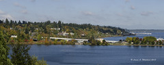 101318 Pano Olympia Isthmus 3 (wildcatlou) Tags: october washington olympia water capitol lake reflections outdoors nature ducks landscape panorama capitollake