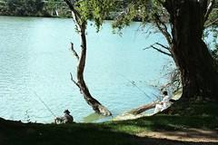 Pescadores. Fishermans (marisabosqued) Tags: pescador fisherman río river ríoebro zaragoza aragón españa spain personas people