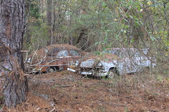 More Relics & Refugees (BennyPix) Tags: junkyard rust old classic vintage antique retro barkada wilmar ar drewcounty arkansas november 2015 © allrightsreserved unauthorizedusestrictlyprohibited allcommercialuseprohibited junk car auto automobile bennypix canon eos 50d