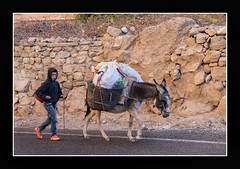 Kid and his donkey, Morocco (Joseph Molinari) Tags: morocco marruecos maroc marocatlasgib 4x4 raid solidarity offroad rural atlas mountain donkey