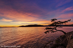 Evening glow at Juniper Point (james c. (vancouver bc)) Tags: pacific purple blue evening reflection dramatic moss sunset juniperpoint westvancouver bc britishcolumbia canada tree lighthousepark park pine rock vancouver sky cliff sea ocean cloud water wave amazing background beautiful color colour colorful landscape nature scene scenery scenic wallpaper orange red golden cloudscape gorgeous islet island twilight mountain