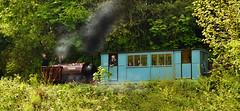 Peter (Beardy Vulcan II) Tags: peter locomotive train steam narrowgauge railway amberleymuseumrailway amberlyworkingmuseum museum amberly arundel sussex westsussex england spring april 2017