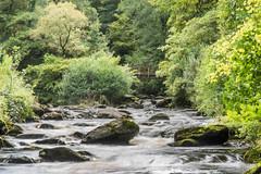 DSG_5610.jpg (alfiow) Tags: eastlynriver hoaroakriver longexposure lynmouth water watersmeet