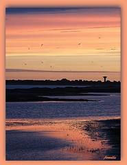 Dream in blue and pink ! (Armelle85) Tags: extérieur nature paysage sunset coucherdesoleil eau lagune mer océan ciel ombres lumière horizon