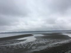 Niebla pacífica (misiekmintus) Tags: vancouver bc canada pacific ionaisland richmond ocean