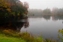 Foggy Colors (Northern Wolf Photography) Tags: fog foliage forest pond trees vermont woodford woods unitedstates us