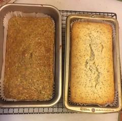 Lemon Poppyseed Cake and Vegan Lemon Zucchini Poppyseed Cake (sfwooss) Tags: lemon poppyseed vegancake