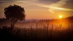 Herbstmorgen (A.K. 90) Tags: cloudssunsetsstormssunrise sunlight sunrises sun sushine nature landscape thüringerwald thüringen landschaft natur licht morgen sonnenaufgang sonne sonnenschein sonyalpha6000 e18135mmf3556oss